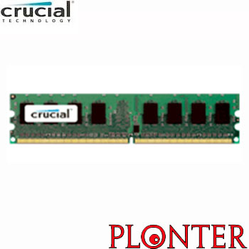 Crucial - CT25672AA667A - ������ ������ ����